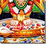 Lord Vishnu's lotus feet