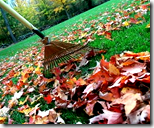 [Raking fall leaves]