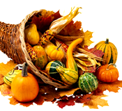 [Thanksgiving cornucopia]
