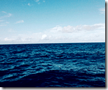 [the ocean]