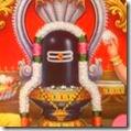[Shiva linga]