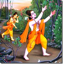 [Rama and Lakshmana looking for Sita]
