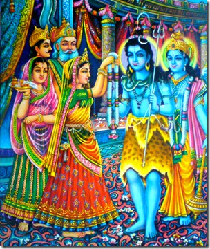 [Marriage of Shiva and Parvati]