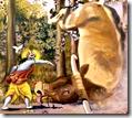 [Krishna throwing bull]