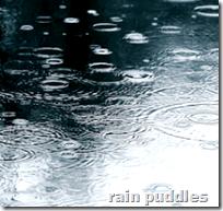 [rain puddles]