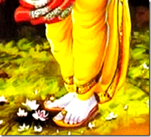 [Shri Rama's lotus feet]
