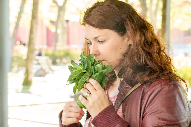 shop sustainable on a local farmers market - fresh herbs