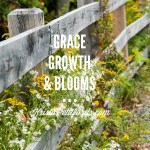 New Things Happening! Grace, Growth & Blooms
