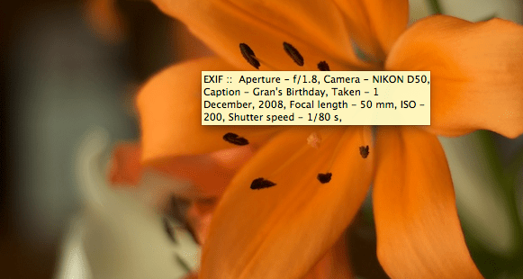 EXIF displayed in a tooltip by Thesography