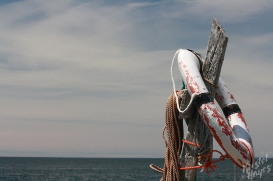 Monhegan Island: Lobster Cove Ring Buoy