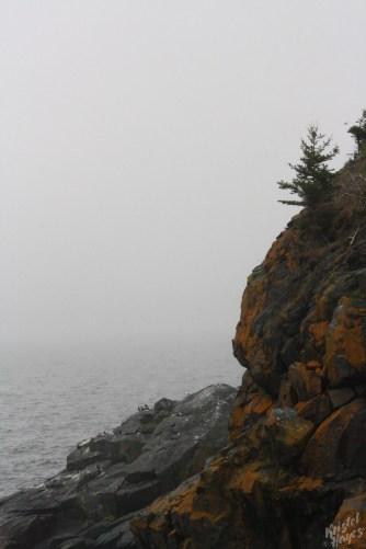 Monhegan Island: View from Little Whitehead