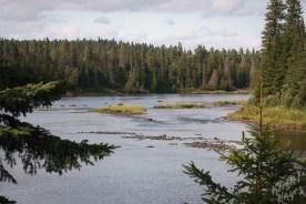 View Downstream Allagash River