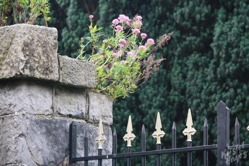 Gates Around Officers' Burial Ground Near IMMA, Dublin