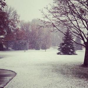 Snow in Fenton