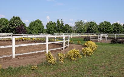 ring fence boundaries