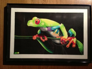 tree frog colorful colored pencil exotic rainforest drawing painting