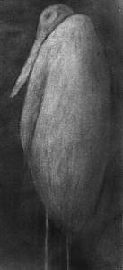 marabou-krister