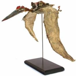 gurney-skybax-maquette
