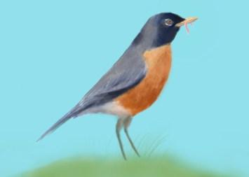 eide-robin-pilchuck
