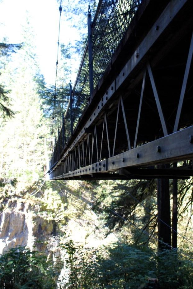 Drift Creek Falls 7