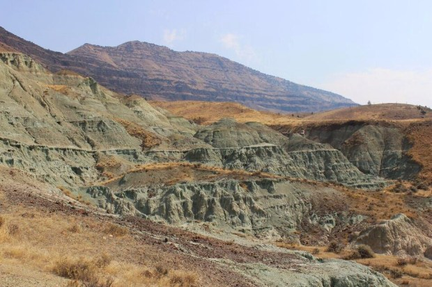 Fossil beds trail of fire valley