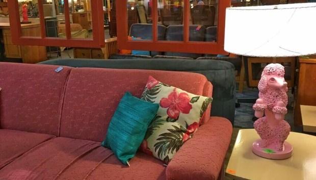 Lounge Lizard poodle lamp