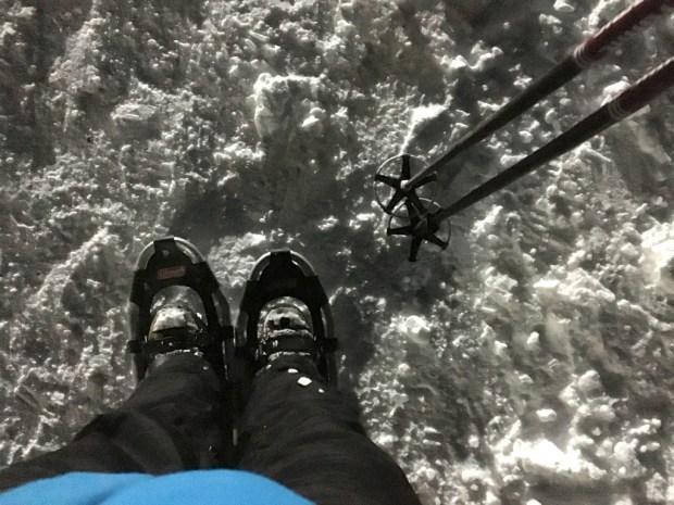 moonlight snowshoe feet