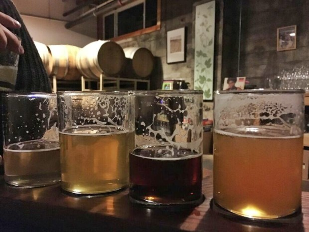 Upright brewing taster tray