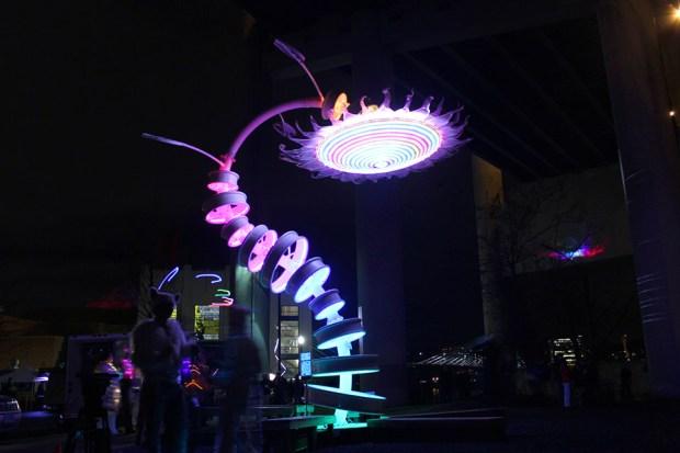Winter Light Fest Flower and Crowd