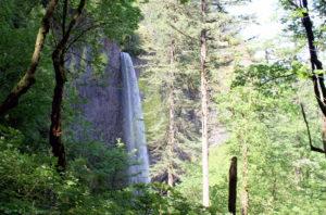 Parkdale Daytrip Latourelle Falls