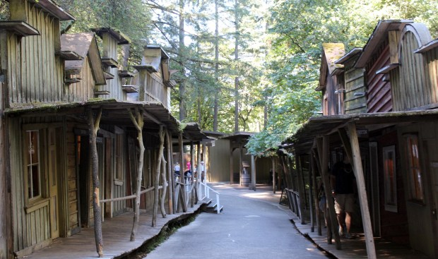 enchanted-forest-western-town