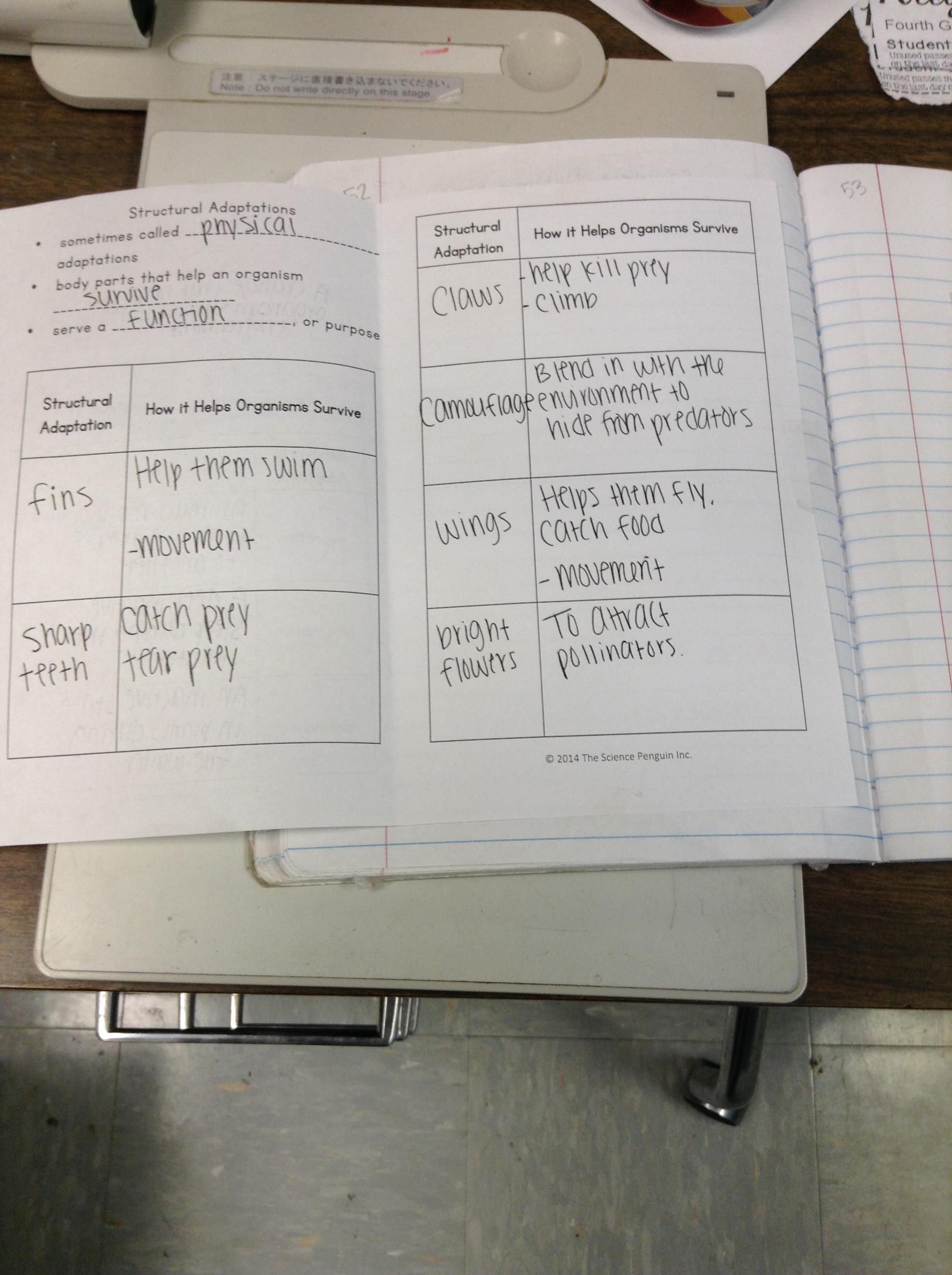 hight resolution of animal adaptations   Mrs. Goggans' 4th Grade Scientists