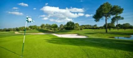 golf-course-green