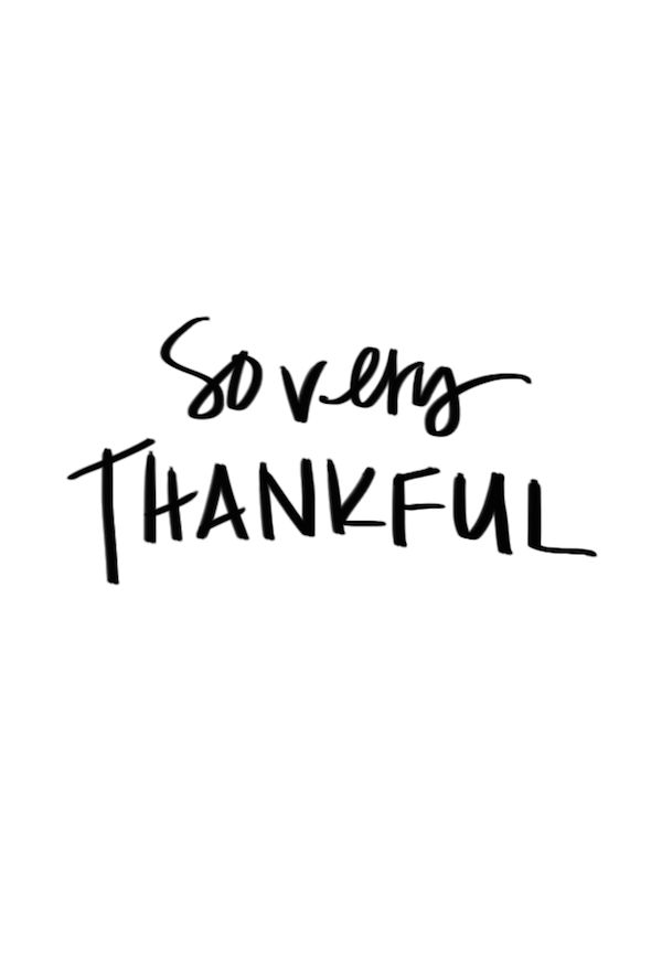 Gratitude Day 4