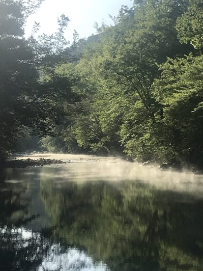 Morning mist on the Little Missouri River