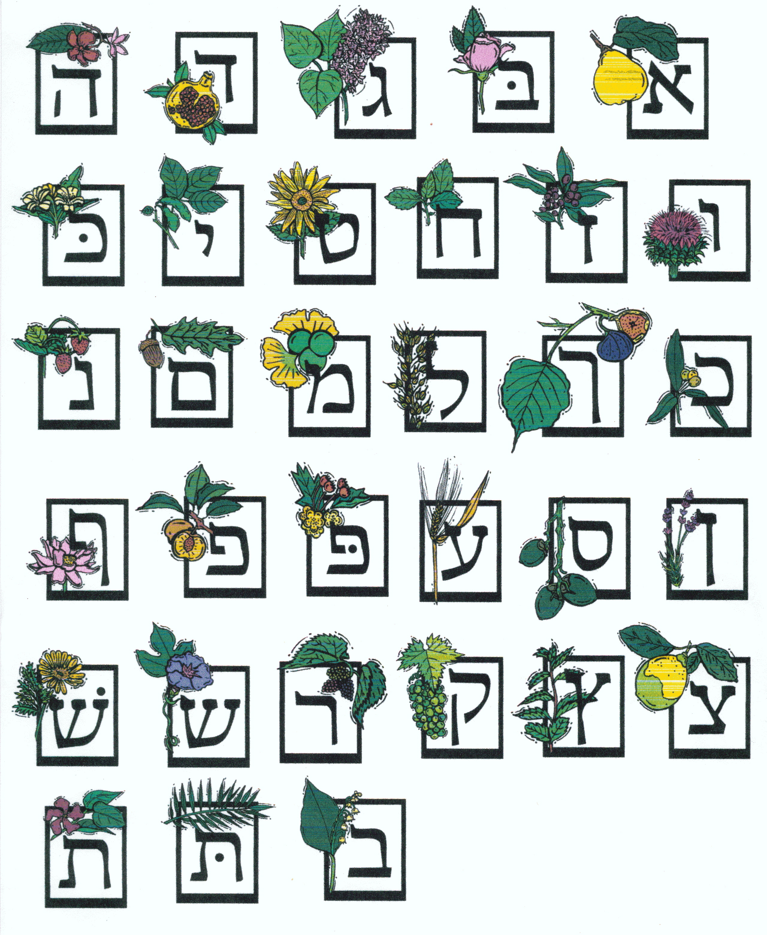 Images About Jewish Alphabet