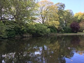 St. Stephen's Green pond