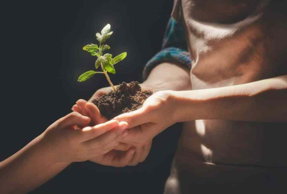 Das Konzept der Weltverbesserung und der Generationskonflikt