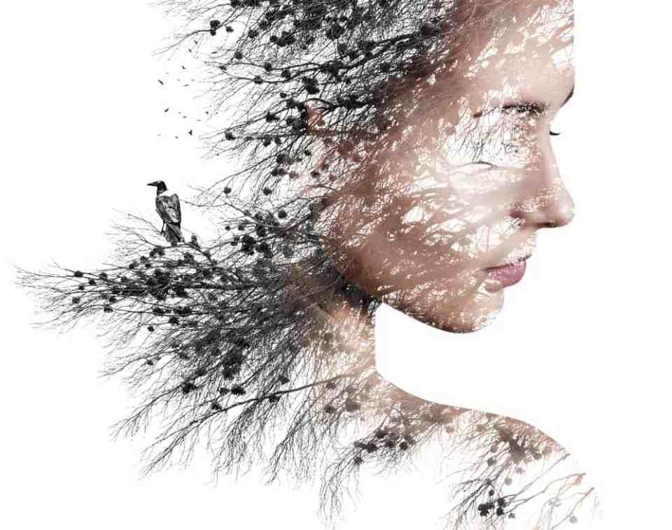 Energetická psychosomatika a rozličné úrovne vedomia, Autorka: Kristina Hazler