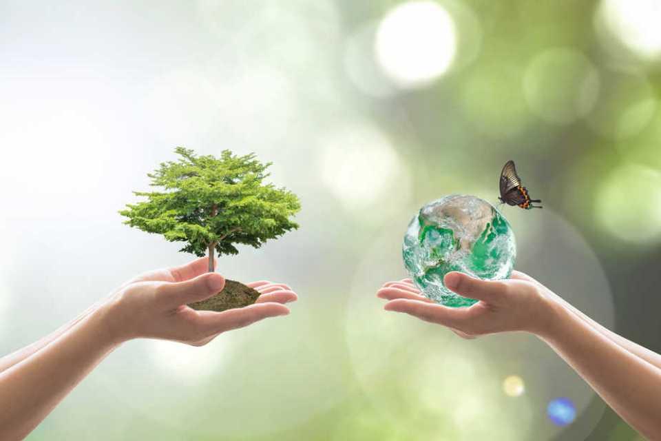 Vedomie, práca s energiou, otepľovanie a klimatické zmeny - text: Kristina Hazler