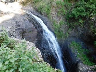 The Natural Bridge - Springbrook National Park