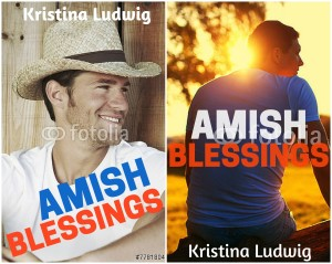 Here are the cover ideas for Amish Blessings... Which do you like better?