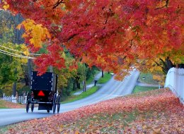 Amish Blessings takes place in the fall. Here's a beautiful picture of Amish country in the autumn to get you in the mood. :)