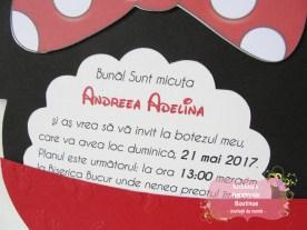 Invitatii handmade Kristina (609)