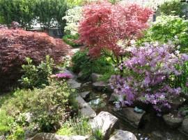 6 juni 15 ta trädgård 21