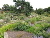 30 juli 15 Kew rock garden 11