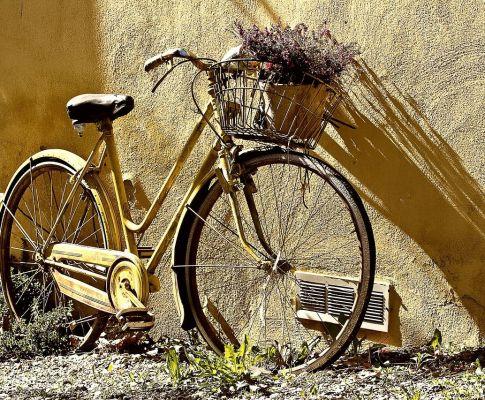 Fahrrad_KristinavomDorf