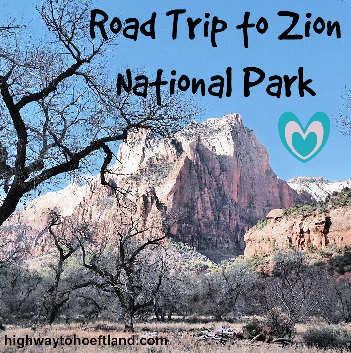 A Road Trip to Zion National Park, Utah, Reveals Stunning Beauty (1/6)
