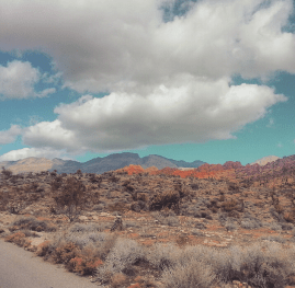 Desert scenery at Red Rock Canyon.