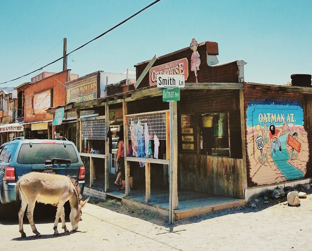 Old Western Charm and Burros Galore in Oatman, Arizona (3/6)